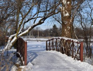 bridge and fields at winter time